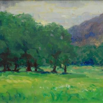 Dyffryn Crawnon, Sold