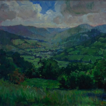 View From Cwmdu, Sold